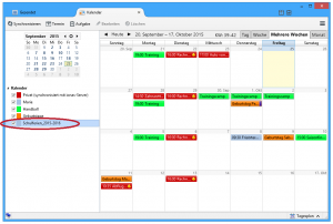 Screenshot Netzwerkkalender in Thunderbird Lightning